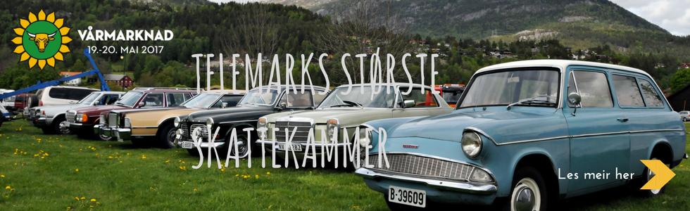 Vårmarknad 2017 frå Vest-Telemark.no